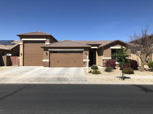 16016 W Canterbury Drive, Surprise, AZ 85379 (MLS #5741369) :: 10X Homes