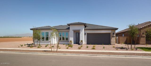 14462 W Larkspur Drive, Surprise, AZ 85379 (MLS #5741379) :: 10X Homes
