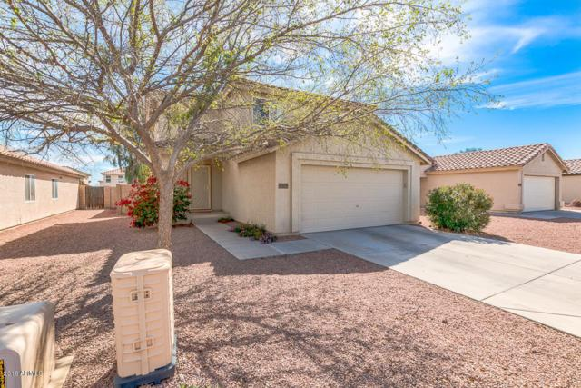 12125 W Flores Drive, El Mirage, AZ 85335 (MLS #5741386) :: My Home Group