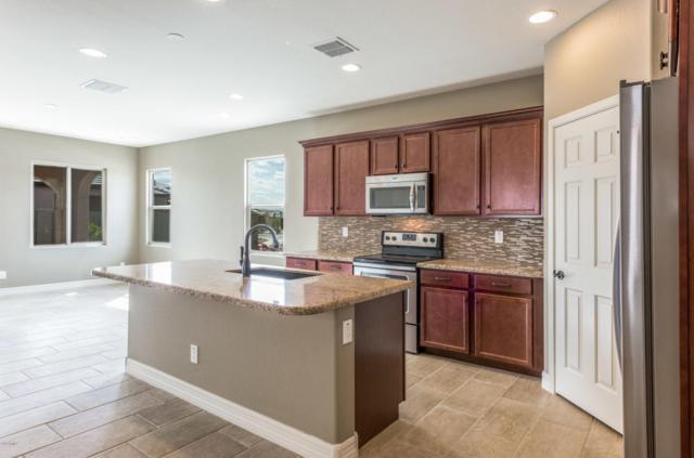 17923 W Deer Creek Road, Goodyear, AZ 85338 (MLS #5741390) :: 10X Homes