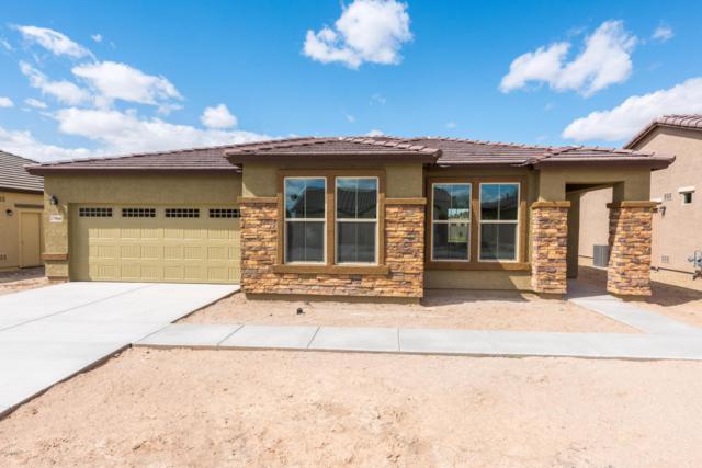 17966 W Fairview Street, Goodyear, AZ 85338 (MLS #5741422) :: 10X Homes