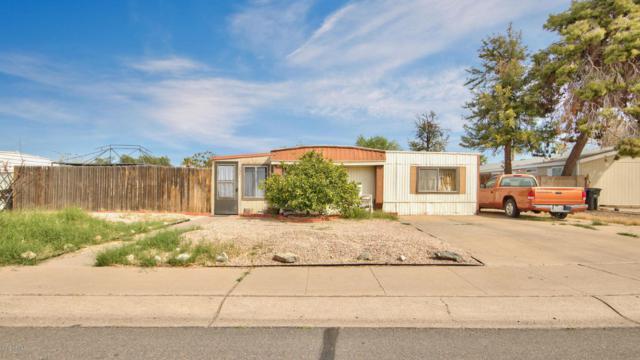 732 W Calle Del Norte, Chandler, AZ 85225 (MLS #5741434) :: 10X Homes