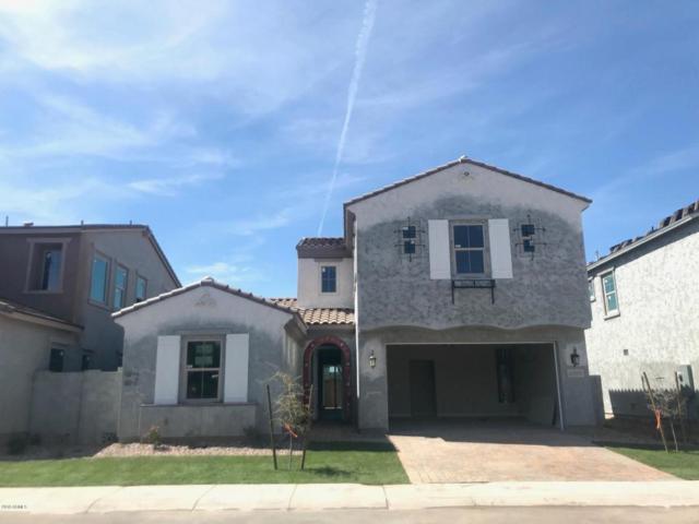 4060 S Thistle Drive, Chandler, AZ 85248 (MLS #5741436) :: 10X Homes