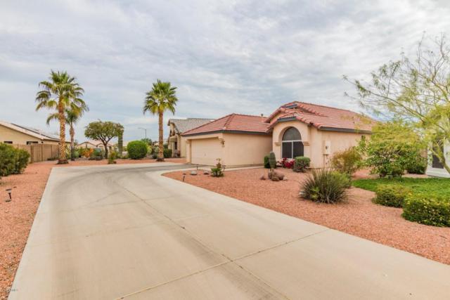 11614 W Mingus Mountain Court, Surprise, AZ 85378 (MLS #5741444) :: 10X Homes