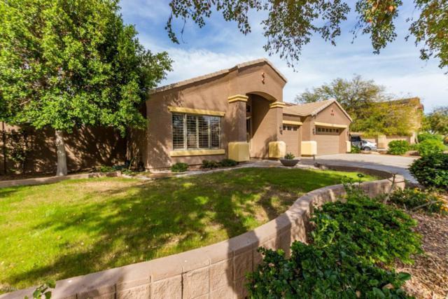 16540 W Roosevelt Street, Goodyear, AZ 85338 (MLS #5741460) :: Kortright Group - West USA Realty
