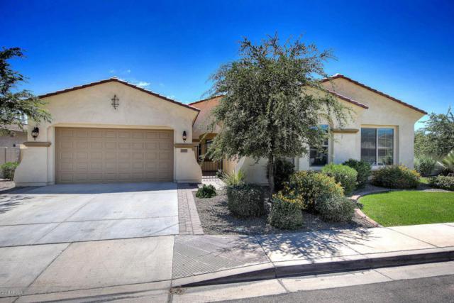 6649 S Champagne Way, Gilbert, AZ 85298 (MLS #5741466) :: 10X Homes