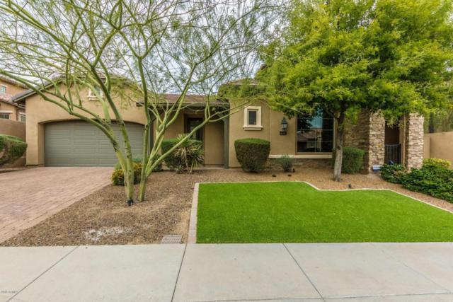 28614 N 68th Avenue, Peoria, AZ 85383 (MLS #5741479) :: 10X Homes