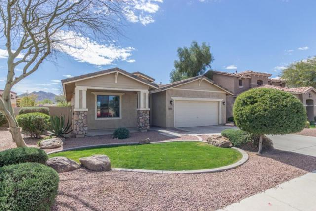3771 E Jaguar Avenue, Gilbert, AZ 85298 (MLS #5741510) :: Revelation Real Estate