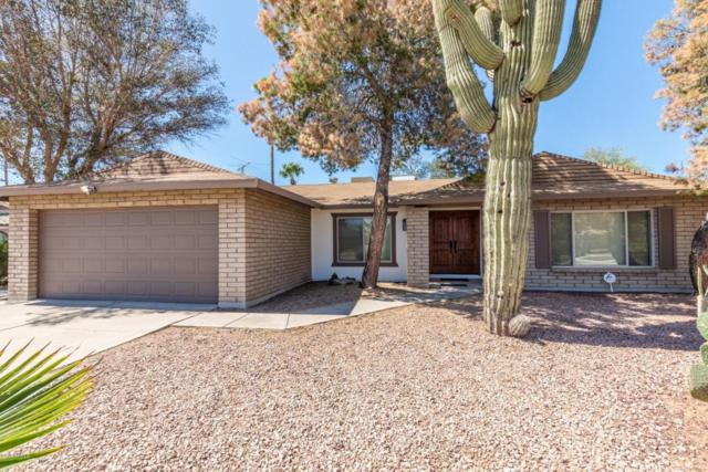13060 N 48TH Place, Scottsdale, AZ 85254 (MLS #5741523) :: 10X Homes