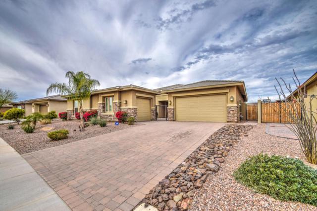 5104 S Ponderosa Drive, Gilbert, AZ 85298 (MLS #5741531) :: 10X Homes
