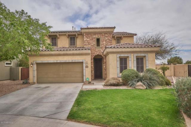18925 N Goleta Street, Maricopa, AZ 85138 (MLS #5741553) :: 10X Homes