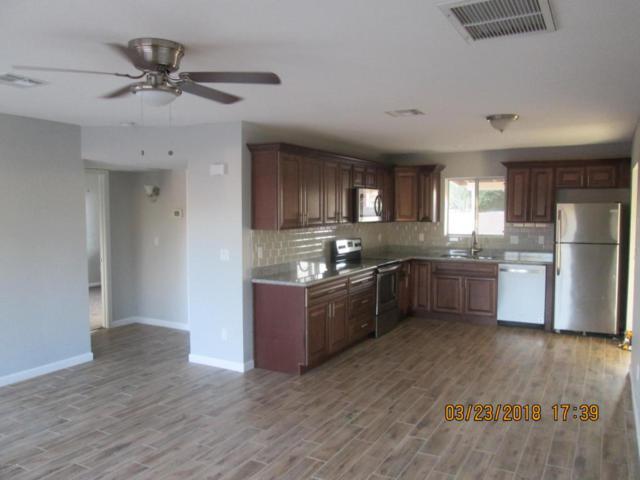 2200 S Buena Vista Drive, Apache Junction, AZ 85120 (MLS #5741559) :: 10X Homes