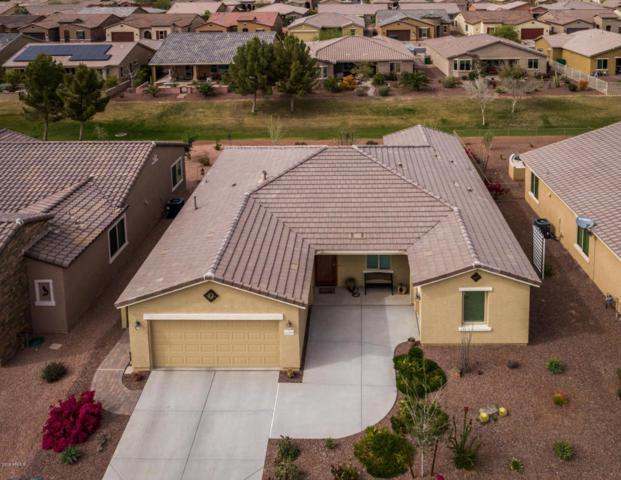 42078 W Cribbage Road, Maricopa, AZ 85138 (MLS #5741560) :: 10X Homes
