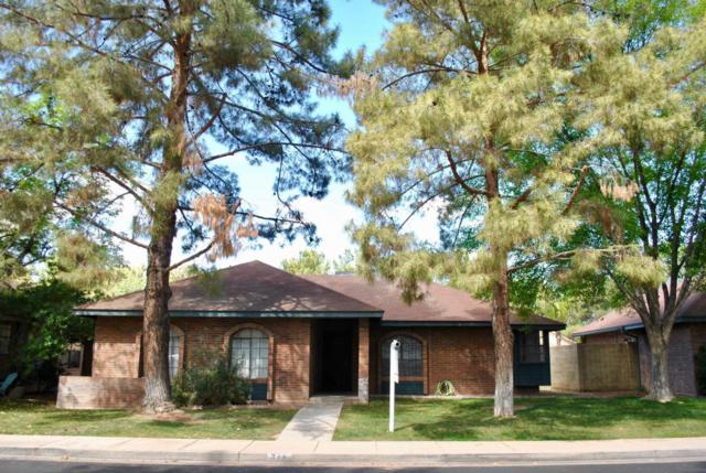 844 E Lexington Avenue, Gilbert, AZ 85234 (MLS #5741571) :: 10X Homes