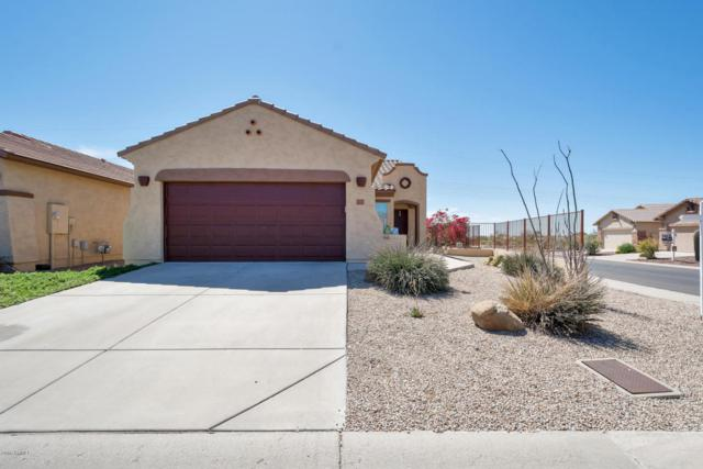 11133 E New Frontier Court, Gold Canyon, AZ 85118 (MLS #5741581) :: Revelation Real Estate