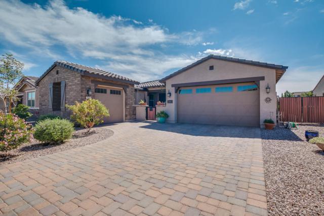 22053 E Escalante Road, Queen Creek, AZ 85142 (MLS #5741589) :: Team Wilson Real Estate