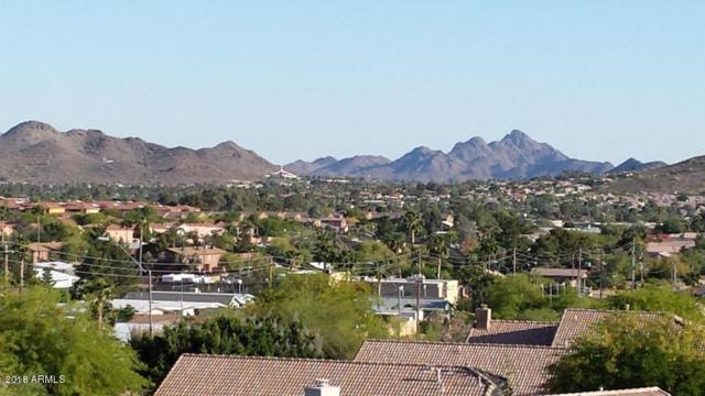 1545 E Villa Maria Drive, Phoenix, AZ 85022 (MLS #5741592) :: Revelation Real Estate