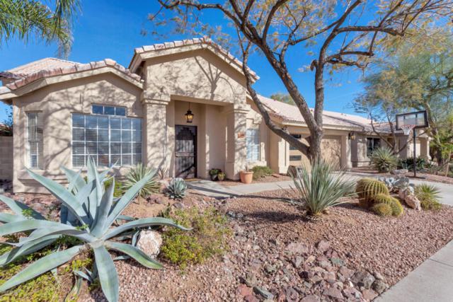 17241 N 46TH Street, Phoenix, AZ 85032 (MLS #5741597) :: Revelation Real Estate