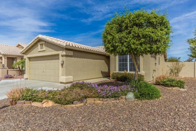 20044 N Coyote Lakes Parkway, Surprise, AZ 85378 (MLS #5741670) :: Kortright Group - West USA Realty