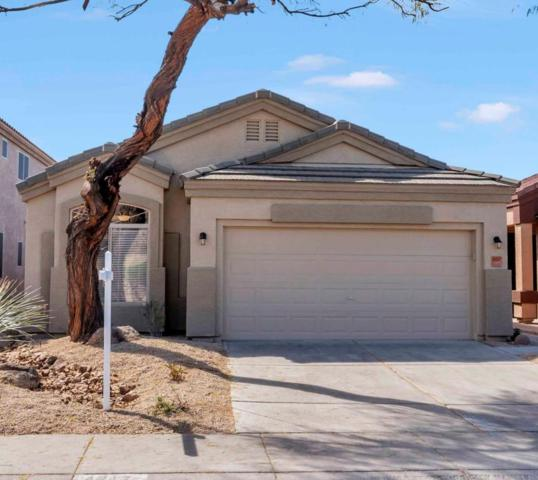 4217 E Desert Sky Court, Cave Creek, AZ 85331 (MLS #5741675) :: Occasio Realty