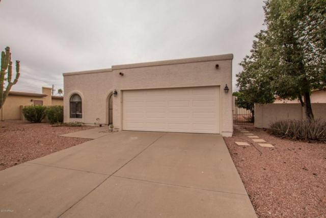 26441 S Saddletree Drive, Sun Lakes, AZ 85248 (MLS #5741743) :: Kortright Group - West USA Realty