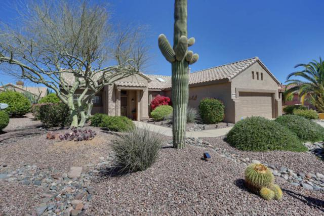 16268 W Arroyo Vista Lane, Surprise, AZ 85374 (MLS #5741747) :: Kortright Group - West USA Realty