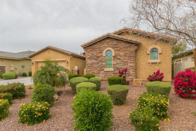 14902 W Aldea Drive N, Litchfield Park, AZ 85340 (MLS #5741764) :: Kortright Group - West USA Realty