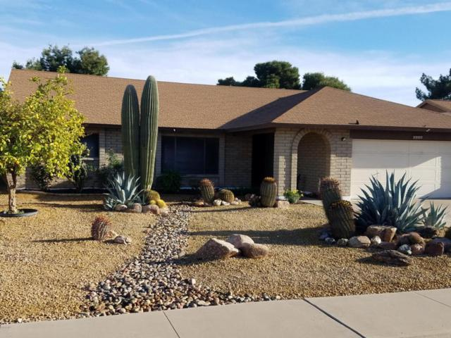 7337 W Aster Drive, Peoria, AZ 85381 (MLS #5741787) :: Kortright Group - West USA Realty
