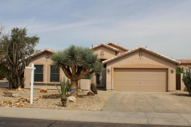 10926 W Overlin Lane, Avondale, AZ 85323 (MLS #5741802) :: Kortright Group - West USA Realty