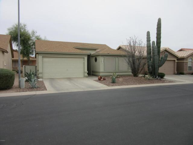 1723 E Palm Beach Drive, Chandler, AZ 85249 (MLS #5741845) :: Kortright Group - West USA Realty