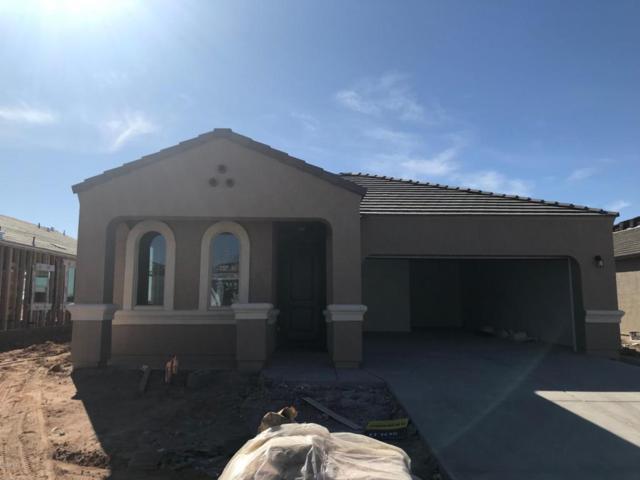 41266 W Jenna Lane, Maricopa, AZ 85138 (MLS #5741867) :: Yost Realty Group at RE/MAX Casa Grande
