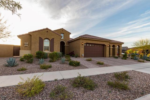 4712 S Anitole Way, Mesa, AZ 85212 (MLS #5741883) :: Kortright Group - West USA Realty