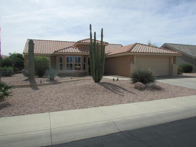 14613 W Las Brizas Lane, Sun City West, AZ 85375 (MLS #5741933) :: Occasio Realty