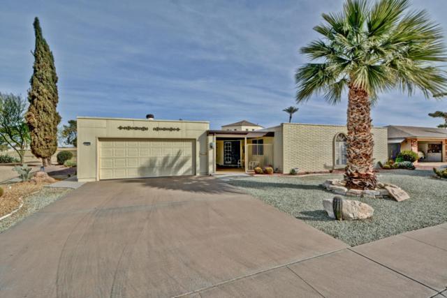 10910 W Wedgewood Drive, Sun City, AZ 85351 (MLS #5742071) :: Occasio Realty
