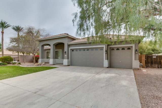 11326 N 152ND Lane, Surprise, AZ 85379 (MLS #5742205) :: Occasio Realty