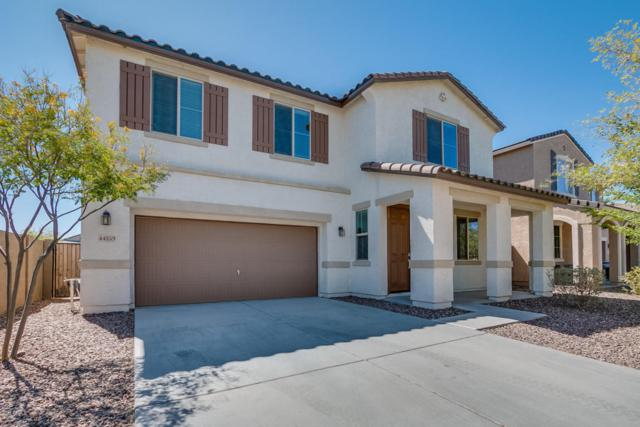 44259 W Eddie Way, Maricopa, AZ 85138 (MLS #5742218) :: Occasio Realty