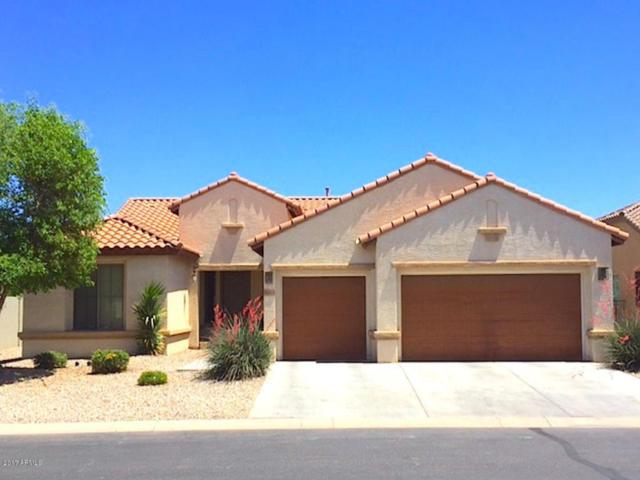 5423 N Scottsdale Road, Eloy, AZ 85131 (MLS #5742422) :: Devor Real Estate Associates