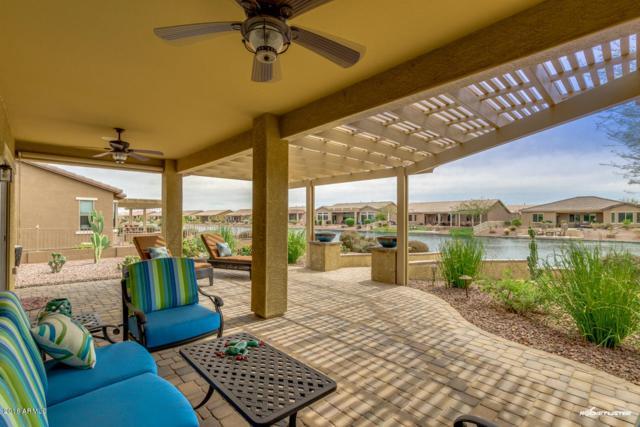 42181 W Rummy Road, Maricopa, AZ 85138 (MLS #5742455) :: Santizo Realty Group