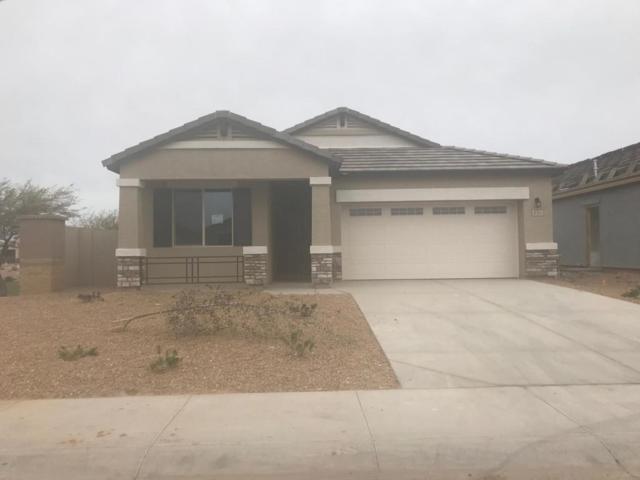 41225 W Williams Way, Maricopa, AZ 85138 (MLS #5742459) :: Yost Realty Group at RE/MAX Casa Grande