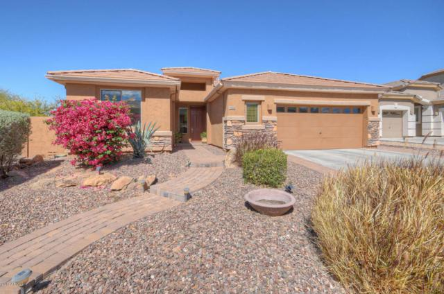 5524 W Rowel Road, Phoenix, AZ 85083 (MLS #5742525) :: Occasio Realty