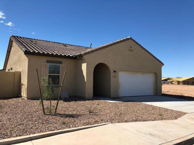 36923 W Mattino Lane, Maricopa, AZ 85138 (MLS #5742566) :: Lux Home Group at  Keller Williams Realty Phoenix