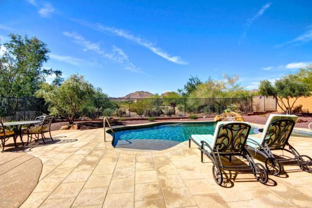 3484 N Park Street, Buckeye, AZ 85396 (MLS #5742611) :: Occasio Realty