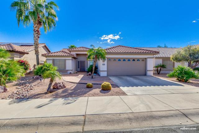 3997 N 160TH Avenue, Goodyear, AZ 85395 (MLS #5742796) :: Occasio Realty