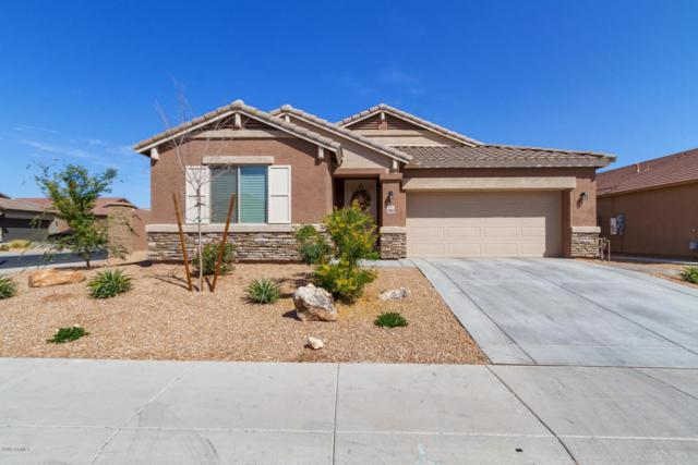 23852 W Mohave Street, Buckeye, AZ 85326 (MLS #5742960) :: Occasio Realty