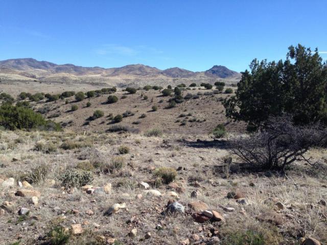 Lot 237 Prairie Schooner, Wikieup, AZ 85360 (MLS #5743103) :: The Daniel Montez Real Estate Group