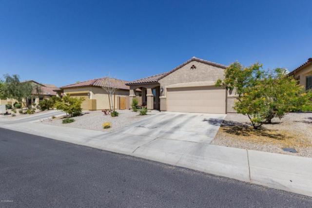 23568 W Harrison Drive, Buckeye, AZ 85326 (MLS #5743114) :: Occasio Realty