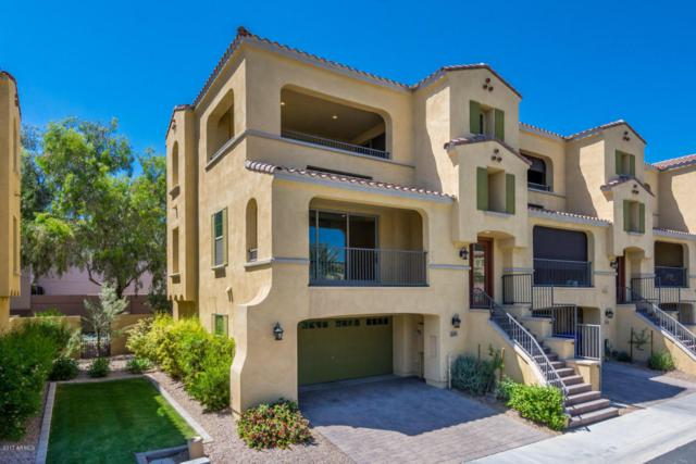 830 N Imperial Place, Chandler, AZ 85226 (MLS #5743267) :: Riddle Realty