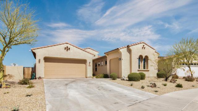 18010 W Thunderhill Place, Goodyear, AZ 85338 (MLS #5743311) :: The Wehner Group
