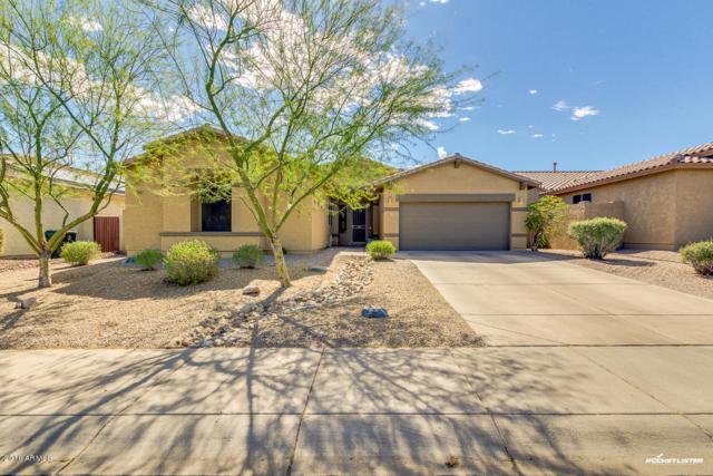 18441 W Western Star Boulevard, Goodyear, AZ 85338 (MLS #5743322) :: Occasio Realty