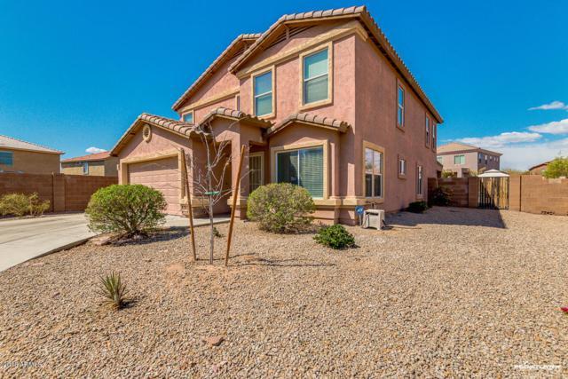 25298 W La Mont Avenue, Buckeye, AZ 85326 (MLS #5743461) :: Santizo Realty Group